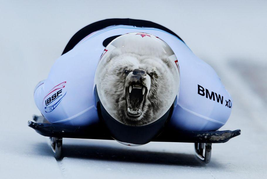 年度最佳图片第三弹:熊出没请小心!