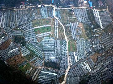 法媒:中国雄心勃勃向贫困宣战 已有80万党员派往农村
