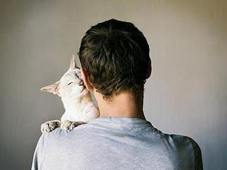 猫咪向人示爱的十种方式