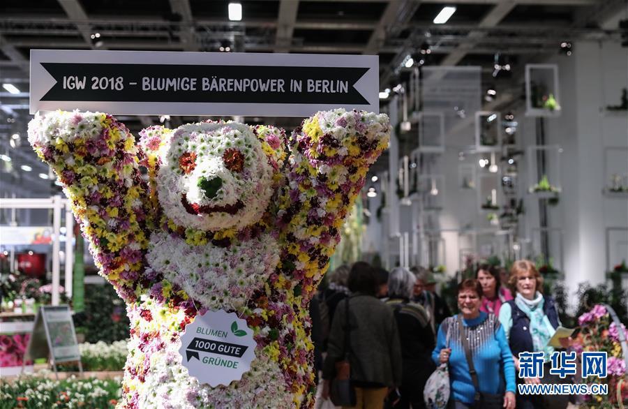 2018柏林国际绿色周开幕