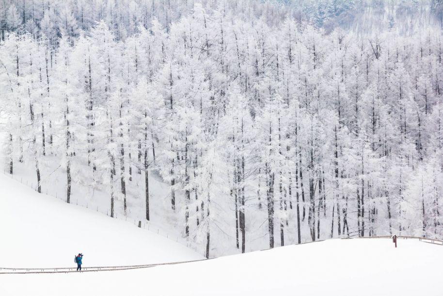 从平昌到首尔,借着冬奥会领略韩国十大风情胜地