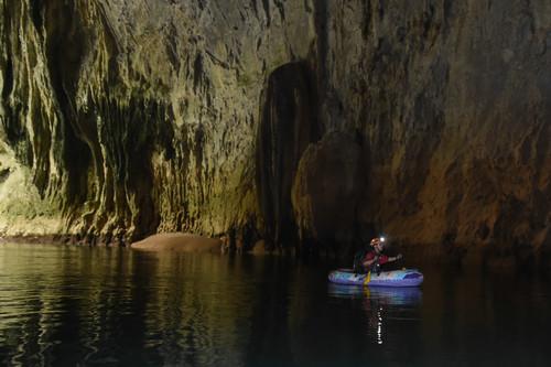 急速赛车8码必中:只有中国有!研究发现31种仅存在中国洞穴里的植物
