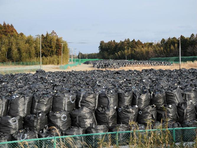 外媒:韩国打输福岛水产品官司将提上诉 称将继续禁运
