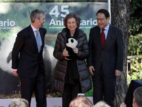 西媒:中国西班牙续写大熊猫情缘 中西友谊和文化交流象征
