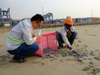 """加纳中企工程项目上的""""海龟孕产中心"""""""