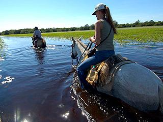 """保护湿地还是支持""""土著""""?"""