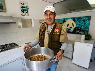 墨西哥城的大熊猫守护者