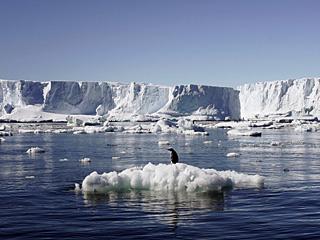 南极冰层融化速度超乎想象
