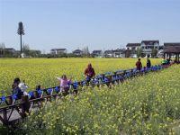 苏州:打造旅游兴农新样本