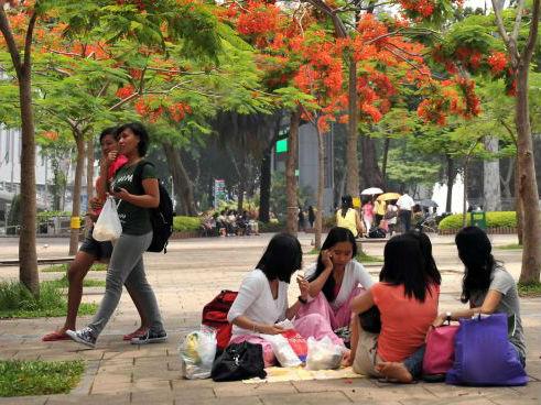 外媒称中国或引进更多菲佣与英语教师:中产阶级看重英语能力