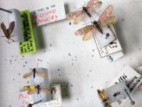 科学家还原2亿年前昆虫真实颜色