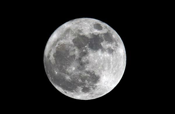 """英媒:中国拟在月球背面种花养蚕 打造""""微型生态圈"""""""