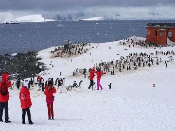 """港媒称""""旅游热""""影响南极生态:破坏环境 干扰科考"""