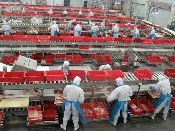 外媒:中国一季度经济表现超预期 全年增速或达6.5%
