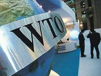 世贸组织总干事称贸易战阴云影响企业投资