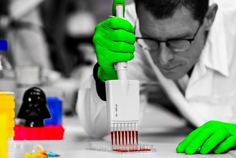 计数器、细胞、斑马鱼:独具魅力的科学照片