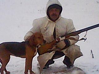 """美国一只狗在家开枪把主人""""打了个半死"""""""