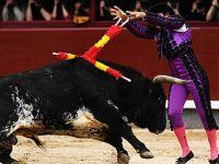 马德里上演传统斗牛表演