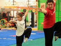 练武吧,爸爸——一个美国武术家庭的梦想