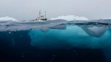 地球上最后一片净土也沦陷?塑料污染到达南极洲