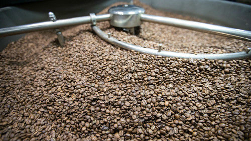 美媒称中国年轻人助推咖啡文化热:供应快跟不上了!