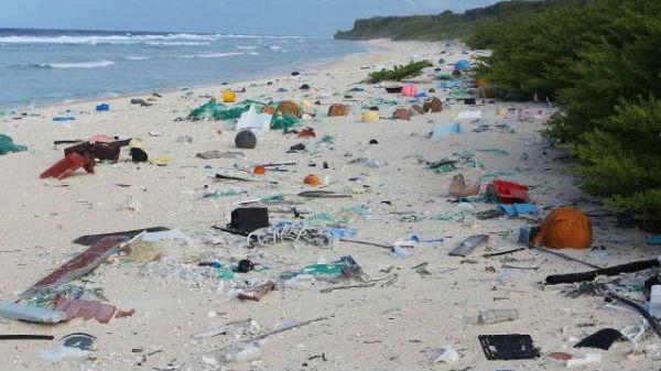 """世界自然基金会警告:地中海可能变成""""塑料海"""""""