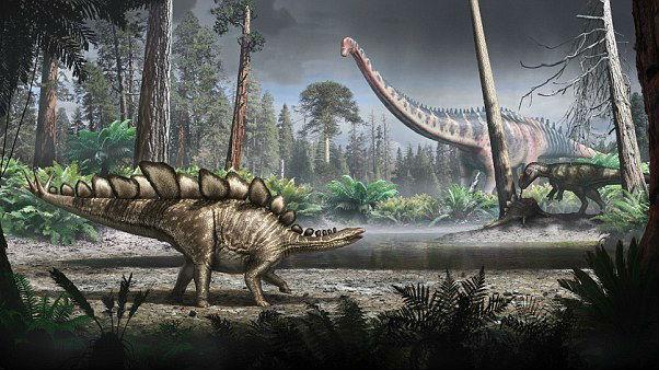 """恐龙真能被""""复活""""吗?遗传学教授:电影里都是骗人的"""