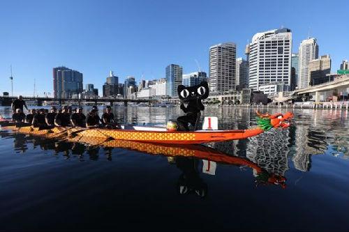 端午节太平洋上赛龙舟 11万中国品牌天猫618集体出海