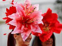 """英国皇家阿斯科特赛马会:女士们""""帽""""美如花"""
