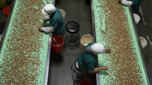 外媒:印度提高农产品关税反击美国