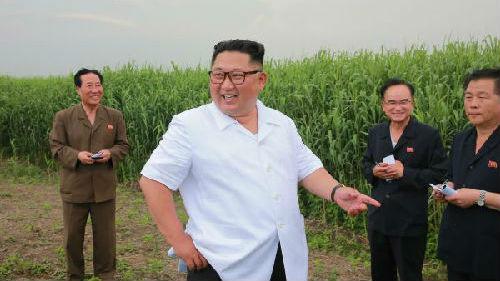 韩媒:金正恩视察中朝边境附近农场引猜测