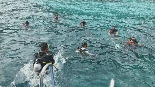 外媒:泰国又发现三名沉船遇难者遗体 涉事船长已被起诉