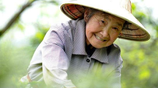 港媒关注辽宁出台政策鼓励老人创业:激发新的社会活力