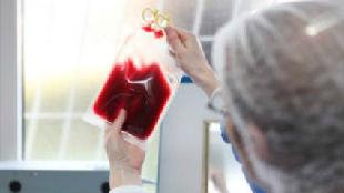 锐参考 | 无法自救白血病?日本人用脐带血做这些事——