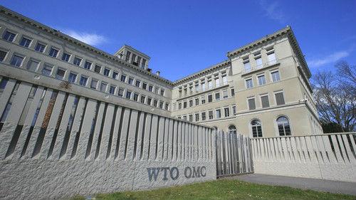 WTO高度评价中国对世界经济贡献 为中国经济改革点赞