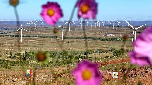 美媒:中国气候政策为全球带来希望 对气候变化影响重大