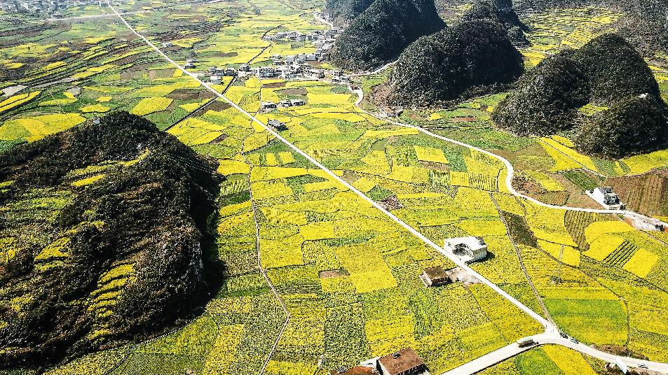 英媒称中国农村吸引人才面临难题:收入低是最大障碍