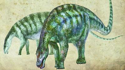 """英媒:中国发现""""神奇灵武龙""""化石 改写恐龙谱系历史"""