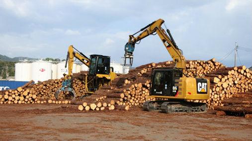 """日媒:中国严格保护森林 转向日本九州""""爆买""""木材"""