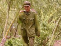 退休军官王成帮的绿色梦想