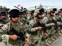 """""""高贵伙伴""""多国联合军事演习在格鲁吉亚举行"""