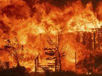 末日大火:美国加利福尼亚州山火疯狂肆虐