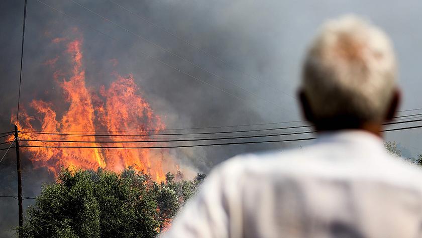 连日高温在葡萄牙多地引发山火灾害