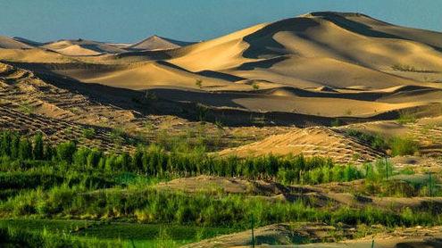 """境外媒体关注中国""""绿色奇迹"""":数十年治沙植树 荒漠变绿洲"""
