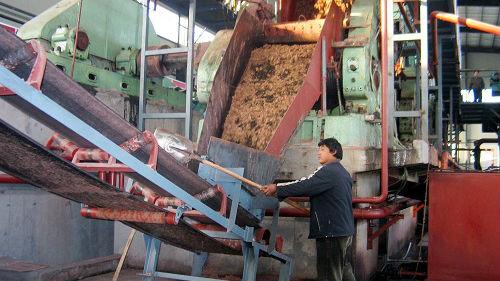研究称中国玉米棒或成未来燃料 现在通常被丢弃