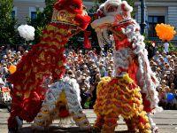 第49届德布勒森鲜花节 中国舞狮亮相匈牙利