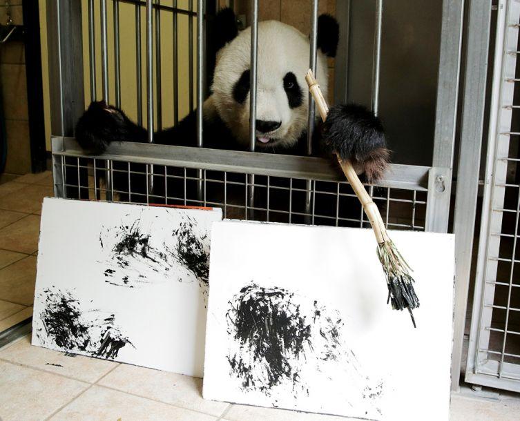 """大熊猫""""挥毫作画"""" 每幅作品售价490欧元"""