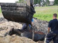 泥潭中的马:18名消防员展开一场不同寻常的营救