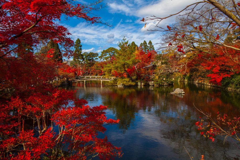 秋天别走!盘点全世界最值得一看的秋季美景