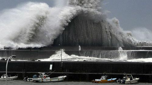 """台湾""""驻大阪办事处""""处长自杀 台媒:或因台风救灾压力过大"""